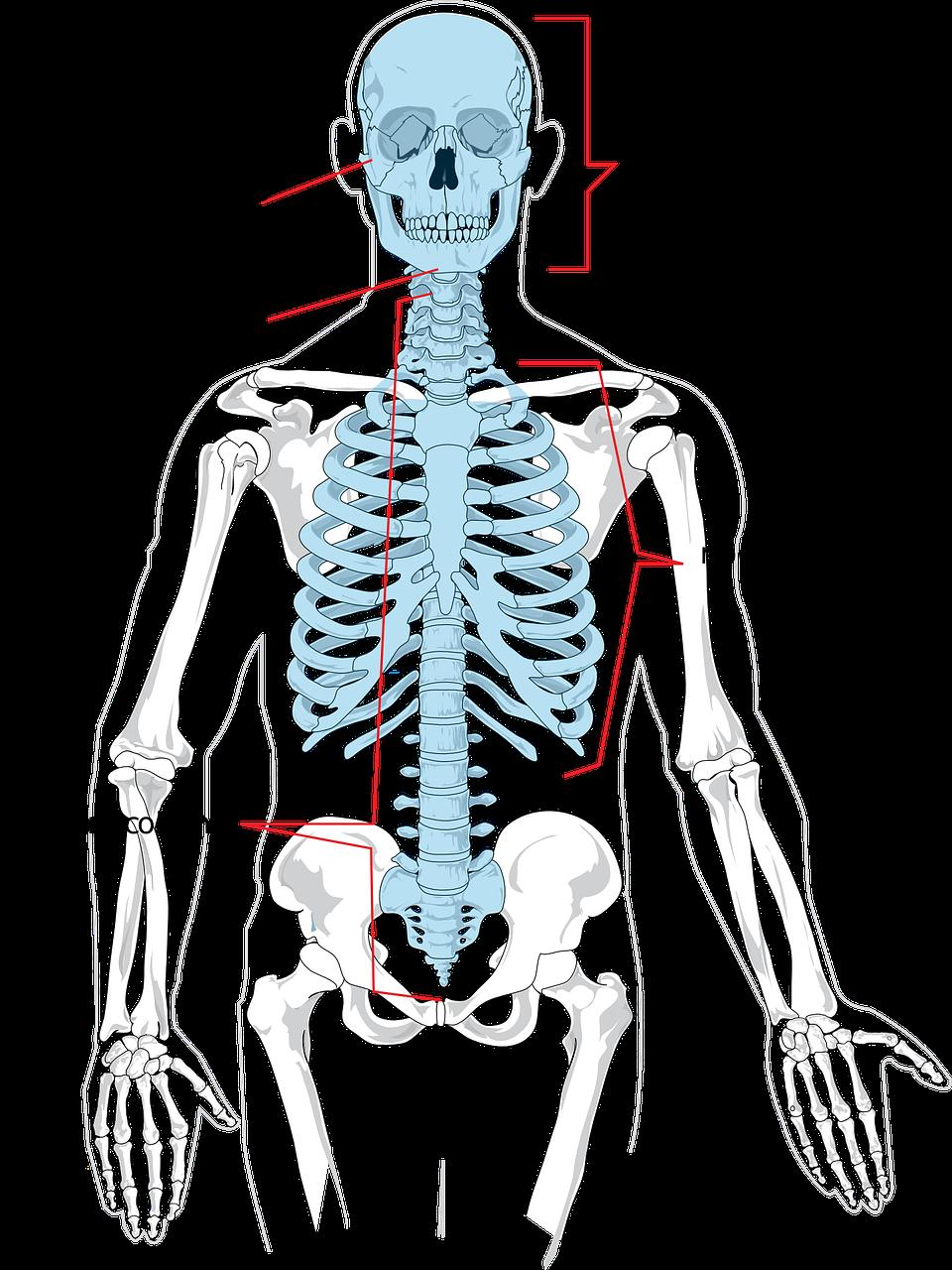 hyperlordóza bederní páteře