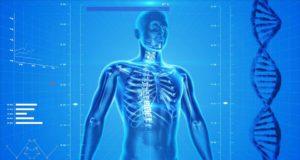 Osteofyty